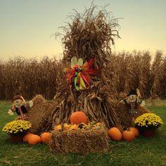Outside Fall Decorations, Fall Yard Decor, Harvest Decorations, Halloween Decorations, Pumpkin Display, Fall Arrangements, Fall Fest, Primitive Fall, Autumn Decorating