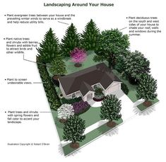 what kind of trees to plant near a farmhouse for landscaping - Google Search