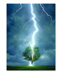 Look what I found on #zulily! Lightning Striking Tree 1,000-Piece Puzzle by Eurographics #zulilyfinds