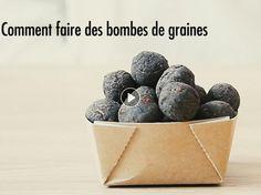 Aussi appelées seed bombs, les bombes à graines pourraient bien sauver la planète ! Inventées dans les années 70 en plein mouvement « Flower Power », elles...