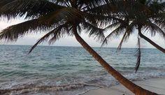 Pour finir un voyage au Nicaragua quoi de mieux de passer quelques jours sur le minuscule île de Little Corn perdue dans la mer des Caraïbes à l'est du Nicaragua. Ce petit îlot de roches et de sable fin est une véritable invitation à l'oubli et à la détente. Descendez au Beach & Bungalow pour vous sentir roi et reine de l'ile! @discovernicaragua @visitnicaragua @littlecornblog #nicaragua #littlecorn #paradise