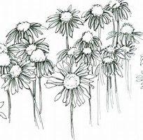 Image result for Pen and Ink Floral Art