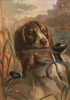 """Figure out even more information on """"hunting dogs"""". Browse through our site. Hunting Painting, Hunting Art, Hunting Dogs, Gouache, Animal Paintings, Figure Painting, Impressionist, Home Art, Oil On Canvas"""