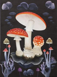 FLORIAN HAAS, Lourdes Trippy Mushrooms, Hippie Vibes, Illustration Art, Nature Illustrations, Wild Nature, Tentacle, Potpourri, Fungi, Psychedelic