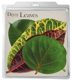 EuroQuest Imports Tropical Deco Parchment Leaves, Package of 20 EuroQuest Imports http://www.amazon.com/dp/B001HN5G30/ref=cm_sw_r_pi_dp_oDmTwb1XTVS2A
