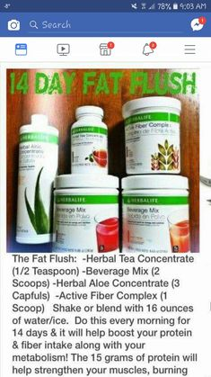 FAT FLUSH PLAN THEORY The goal of the Fat Flush Plan is to cleanse the liver. The liver is the main detoxifying organ in the body. According to the Fat Flush Plan the liver is also our premier fat-burning organ…Read more → Nutrition Herbalife, Herbalife Meal Plan, Herbalife Weight Loss, Herbalife Recipes, Herbalife Sport, Detox Cleanse For Weight Loss, Weight Loss Smoothies, Cleanse Detox, Shake Recipes