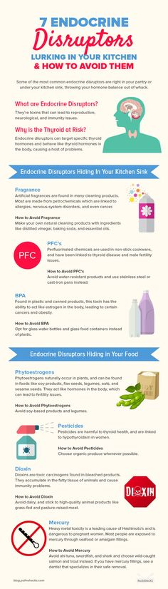 7 Endocrine Disruptors Lurking in Your Kitchen & How to Avoid Them. Read the full article here: https://paleo.co/endocrinedisruptors