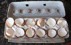 http://www.mamanatural.com/how-to-make-eggshell-calcium/