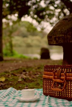 Picnics - packed in basket hampers and eaten under trees.