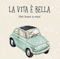 Retro Cars, Vintage Cars, My Dream Car, Dream Cars, Turin, Fiat Cinquecento, Fiat 500 Lounge, Fiat 500 Pop, Fiat Cars