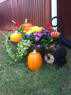 Fall Decor! in the front yard