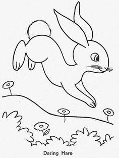 Desenhos para Colorir: Animais Engraçados