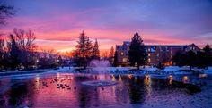 University of Nevada Reno