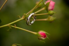 Pillar and Post #Wedding | Angie and Daniel | #weddingring hanging on delicate stems. Budding flowers resemble a beautiful future about to unfold for this couple #torontoweddingphotographer ~ http://www.focusproduction.ca/the-pillar-and-post-wedding/