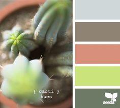 Cacti hues