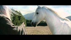 Tragedy strikes Gandalf's horse Shadowfax