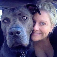 What they should have told me before I rescued my Pit Bullwas this: This is an adventure. Welcome to the best years of your life. (Read on, this has to be one of the best blogs about Pit Bulls, it is just beautiful. Go check it out - http://www.huffingtonpost.com/ashley-gulla/what-they-should-have-tol_b_6474626.html )
