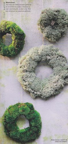 Lichen or Moss wreaths Moss Wreath, Diy Wreath, Xmas Wreaths, Christmas Decorations, Seasonal Decor, Holiday Decor, How To Make Wreaths, Xmas Tree, Christmas Inspiration