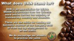dxn_dexin