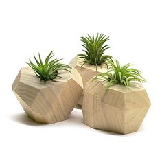 FACETED WOODEN PLANTERS