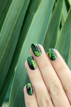 34 Amazing Green House Nails Arts 2018