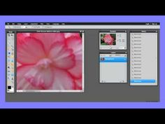 How to select simple and complex objects with the wand tool in Pixlr (Updated version) Art Lessons, Wands, Pink Flowers, Photo Editing, Digital Art, Photoshop, School Photography, Google Docs, Graphic Design