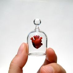 """by Kiva Ford - Handblown Glass Anatomical Heart In A Jar I know its weird but I want it I think its cool. Can we say too much """"Oddities""""?"""