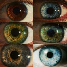 Gorgeous Eyes, Pretty Eyes, Cool Eyes, Perfect Eyes, Photography Themes, Eye Photography, Green Eyes, Blue Eyes, Brown Eyed Girls