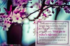 #dailyquote #JaneGoodall www.ToDoInstitute.org