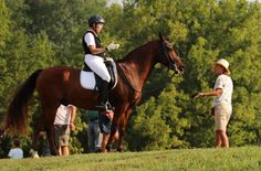 Read about Grand Prix Gold Medalist Rita Dunn - grandma and horse lover and WARHorse!