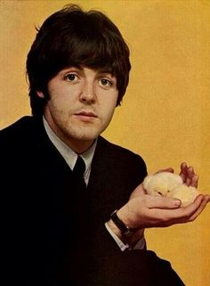 Paul McCartney with baby chicks.