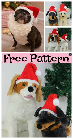 Since it is nearing Christmas, we decided to show you how to make this cute Knit Dog Santa Hat ! Since we are getting presents, why shouldn't a cute dog get Knitting Patterns For Dogs, Dog Clothes Patterns, Knitting Ideas, Knitting Projects, Crochet Dog Sweater, Crochet Pet, Crochet Crafts, Crochet Ideas, Crochet Patterns