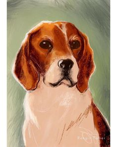 A painting I did for my sister-in-law and her brand new home. This is Pebbles a lovable goofball beagle. She loves food food and food. Oh and food. And some backscratches now and then. . . . . . #beaglesforlife #beagleart #beaglepaintings #beagleportrait #dogportrait # housewarming gift #dogartwork #dogdrawings #tekenen #procreateart #artoninstagram #digitaldrawings #animalportraits #animalpaintings #whiteandbrown #artonthewall #ipadproart #applepencilart#instaart #dutchart #tekening…