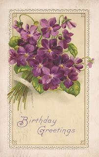 Vintage violet postcard ~ Birthday greetings