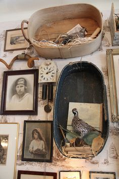 Birds in Baskets on the Wall by Curious Expeditions, via Flickr