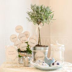 Wedding Details -Tableau mariage con piante aromatiche stile provenzale