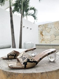 Rococo, Snake, Kitten Heels, Collections, Shopping, Shoes, Products, Fashion, Moda