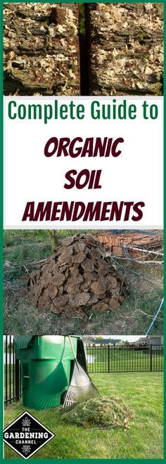 Organic soil amendments can improve the quality and structure of your soil. They will make your soil able to retain moisture and your plants healthier.