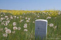 Little Big Horn Battlefield - Montana