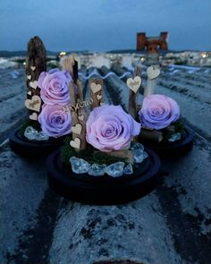 🌸 Forever Roses 🌸 Night view ❣  #infinityroses #preservedroses #lastsforever #roses #roseslover #love #instanight #night #flowers #love #colouful #pink #purple #handmade  Για περισσότερες πληροφορίες και διαθεσιμότητα προϊόντων στείλτε μας προσωπικό μήνυμα 🌸 #anthos_theartofflowers