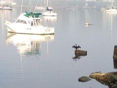 Calm waters-Cuttyhunk