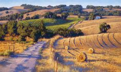 """Old Napa Road"" by June Carey"