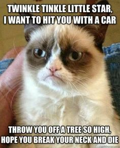 Twinkle tinkle little star, i want to hit you with a car. So mean but so funny!