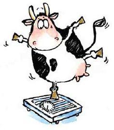 Kreslený kráva porno