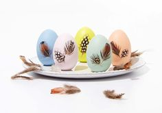 Craft Painting - Decoupage Easter Feather Eggs