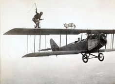 Stunt man and dog on the wings of a plane, ca. 1920s