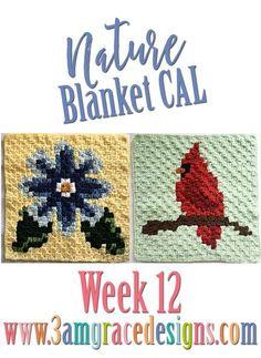 Free C2C crochet pattern Nature Blanket corner to corner crochet-along