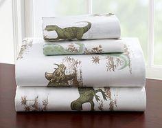 16 Wonderful Dinosaur Bed Sheets