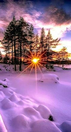 Psychic medium, love spells and accurate psychic online reading call/whatsapp – Beste Winterbilder Winter Sunset, Winter Scenery, Winter Snow, Winter Light, Winter Is Here, Winter Trees, Beautiful Sunrise, Beautiful Morning, Winter Beauty