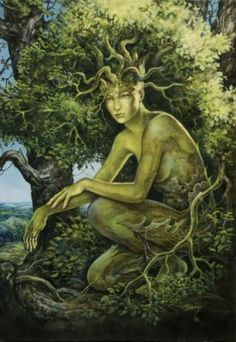 Druids Trees:  A #spirit of the #grove.